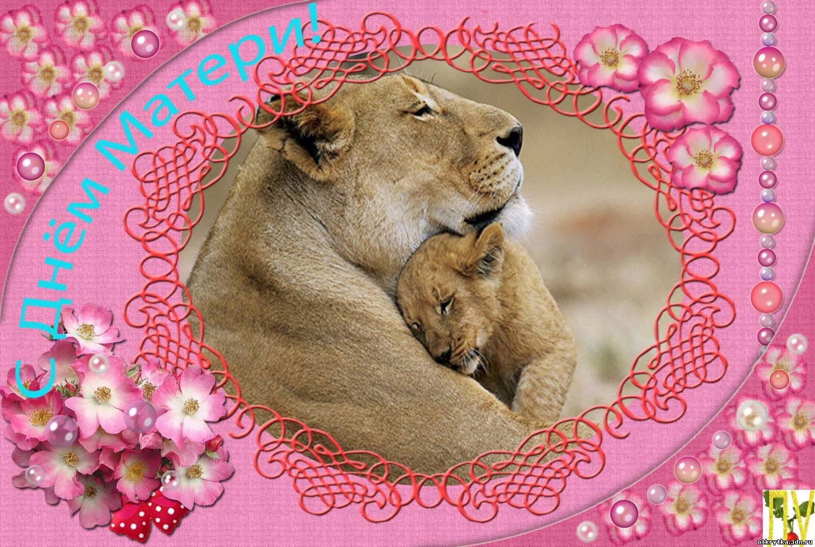 Львица поздравление 74