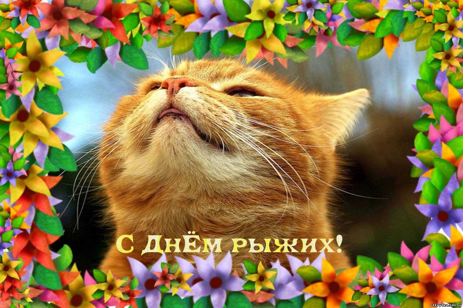 Поздравление в день рыжих