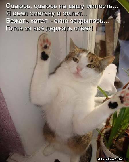 http://otkrytkabest.ru/_ph/219/590974665.jpg