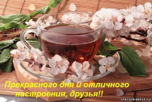 http://otkrytkabest.ru/_ph/24/2/993261225.jpg