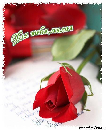 открытка стихи роза для самой милой ноты блеск: http://otkrytkabest.ru/photo/27-0-6997-3