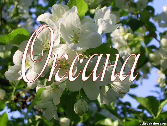 Фото цветов по именам