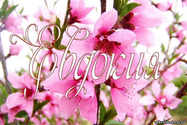Поздравления с днём рождения евдокию