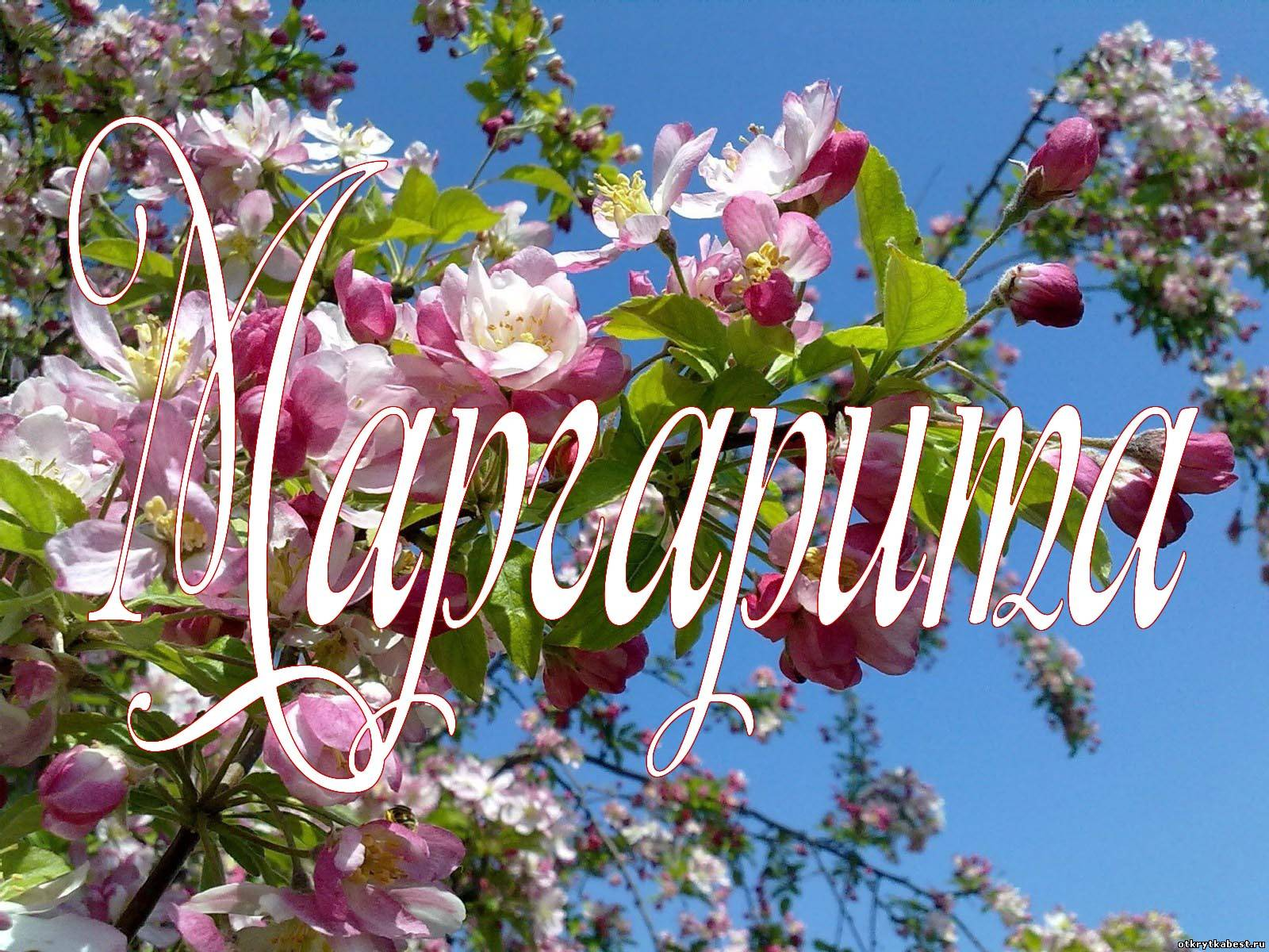 Поздравления с днем рождения Маргарите - Поздравок 43
