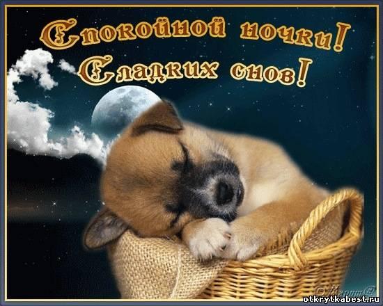 foto-golih-devushek-snizu