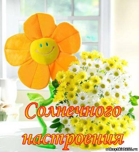 http://otkrytkabest.ru/_ph/40/645679611.jpg